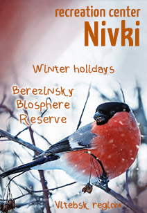 recreation center Nivki budget vacation in the Berezinsky biosphere reserve winter 2021